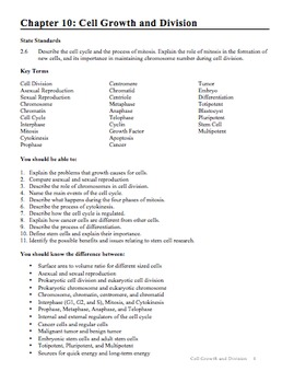 15++ Cell growth and division worksheet Free Download
