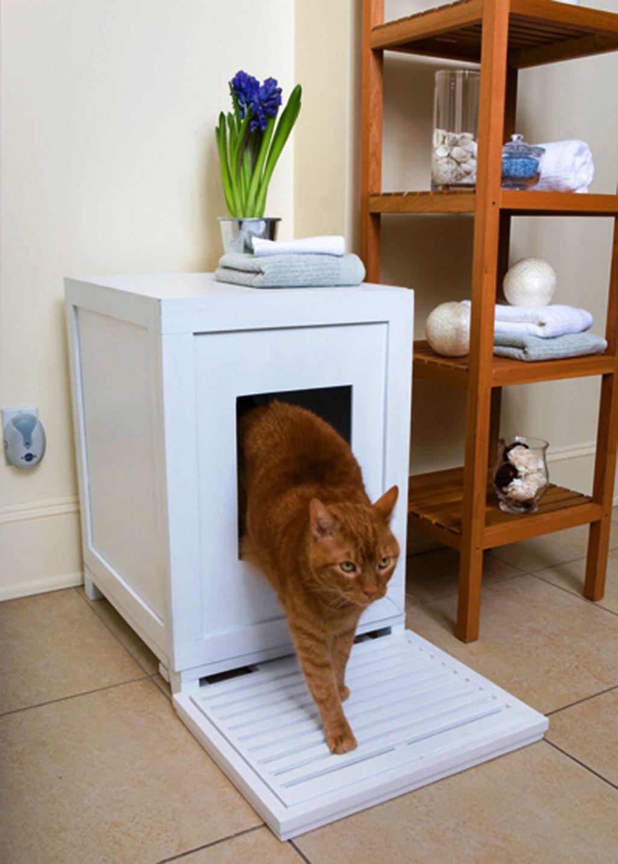 Indoor Cat House Design Ideas - Real House Design | Cat ...
