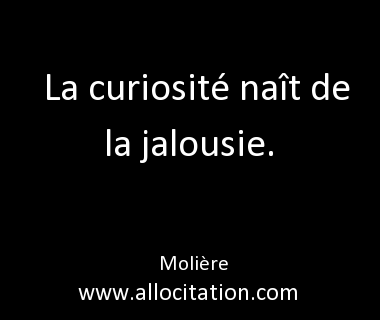 citation sur la curiosite