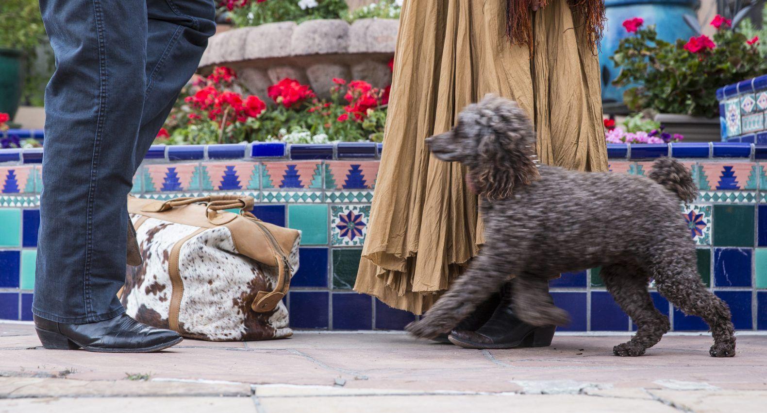 Santa Fe Lodging La Fonda On The Plaza Pet friendly