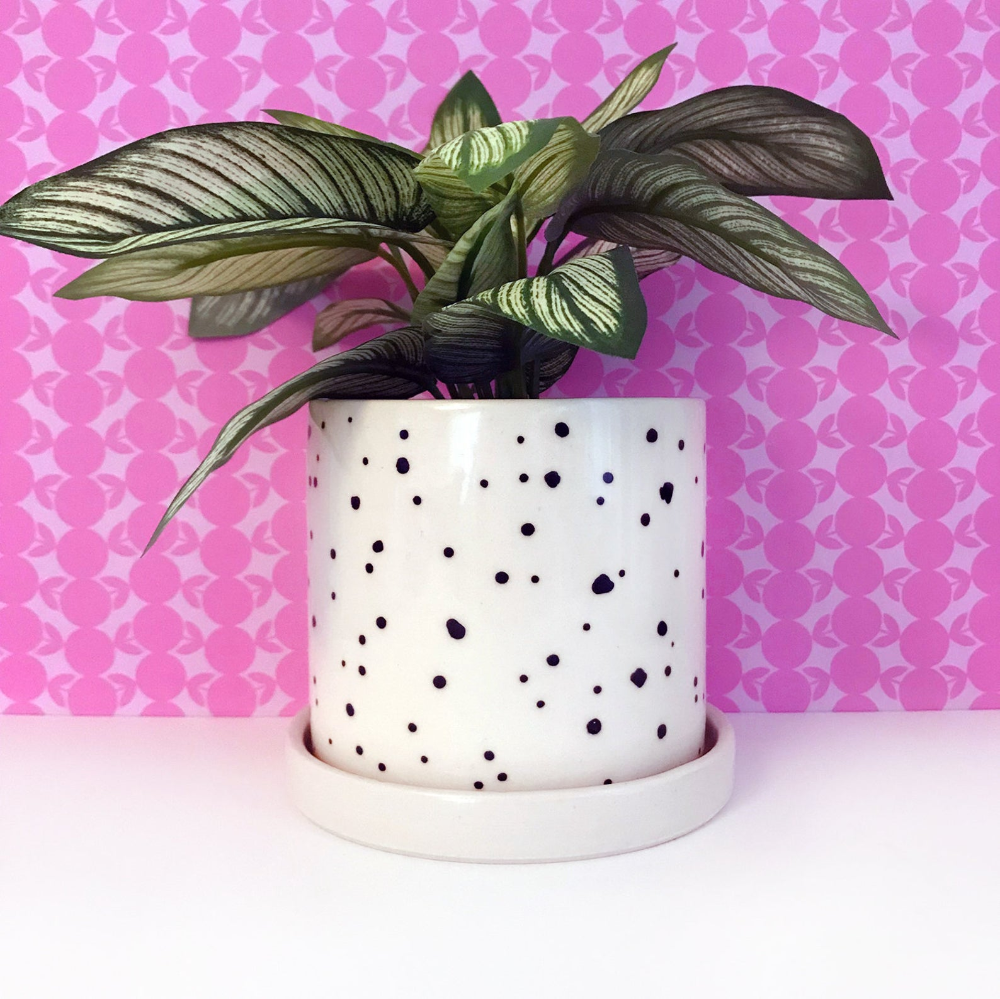 planter bowl with black spots