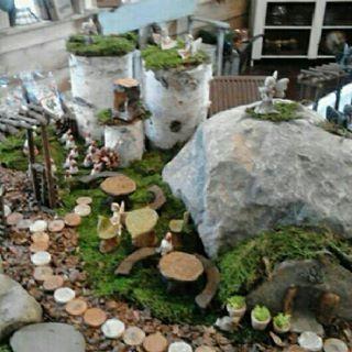 Miniature fairy land cabin display