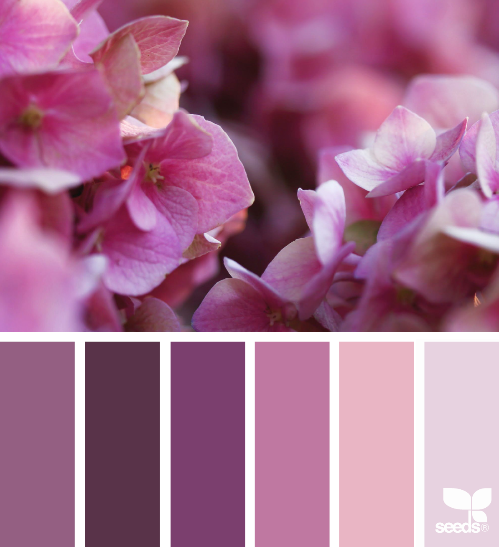 Color Flora | Couleurs/Mosaïc | Pinterest | Flora, Design seeds and ...