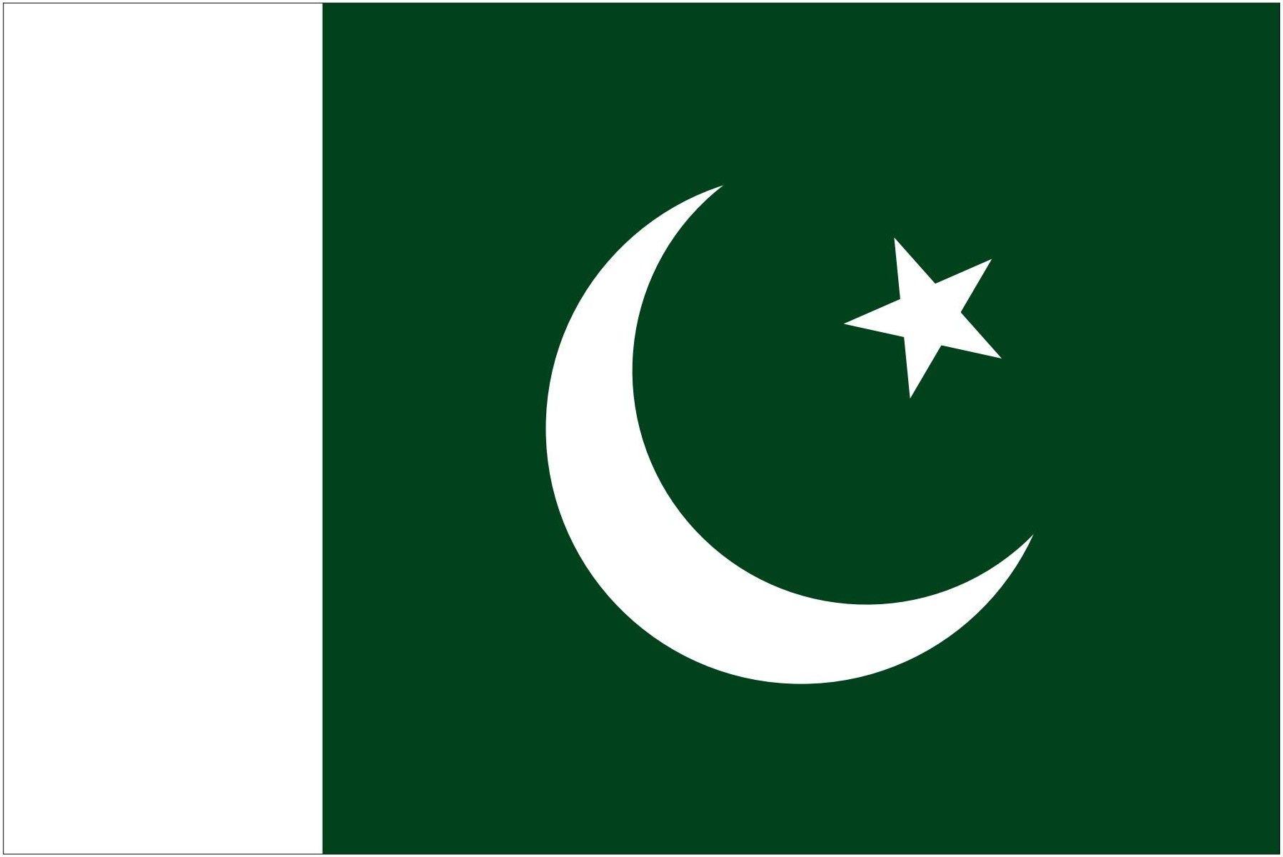 Pakistan Logo And Emblem Pakistani Pakistan Flag Pakistani Flag Flags Of The World