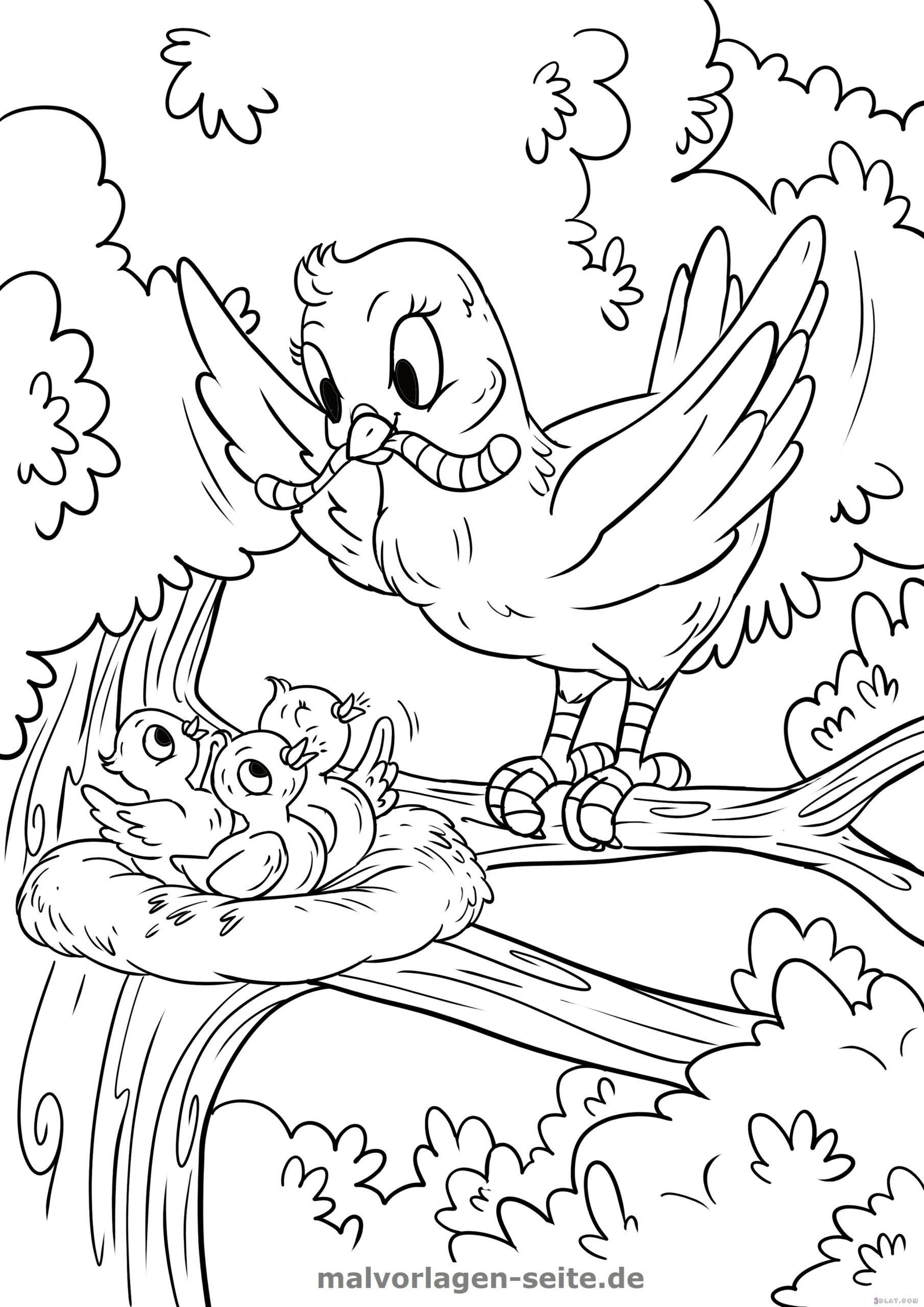kleiner vogel malvorlage vogel  dorothy meyer grundschule