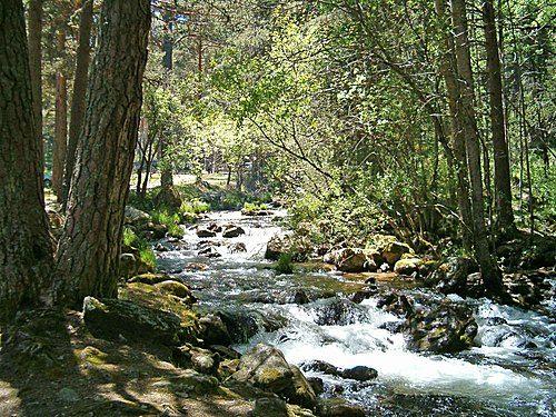 El Río De La Semana El Cega En La Provincia De Segovia Con Multitud De Lugares De Pesca Y Una Ruta Impresiona Bañarse En Madrid Comunidad De Madrid Pesca