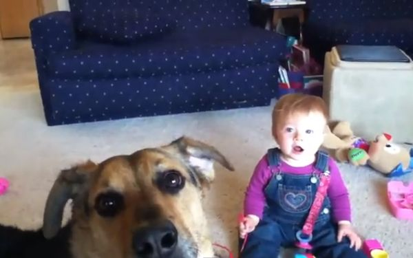 Clips Of Babies Laughing At Dogs