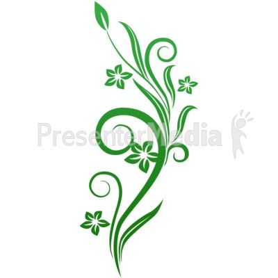Green leaf vine , Common ivy Vine , ivy transparent background PNG clipart    HiClipart
