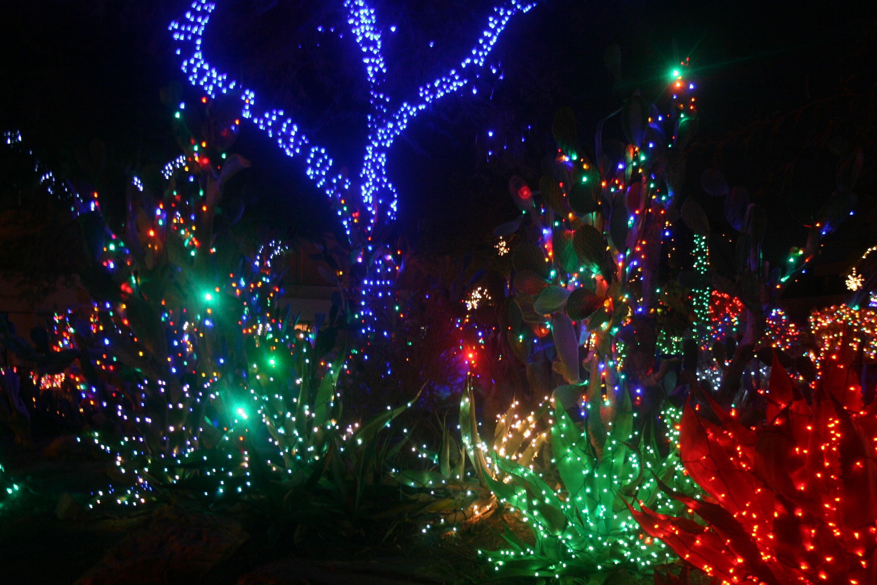 christmas lights EthelMChocolateFactoryChristmas