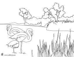 Resultado De Imagen Para Imagen De Paisajes Naturales Para Pintar Paisajes Naturales Dibujo Dibujos Para Colorear Imagenes De Paisajes Naturales