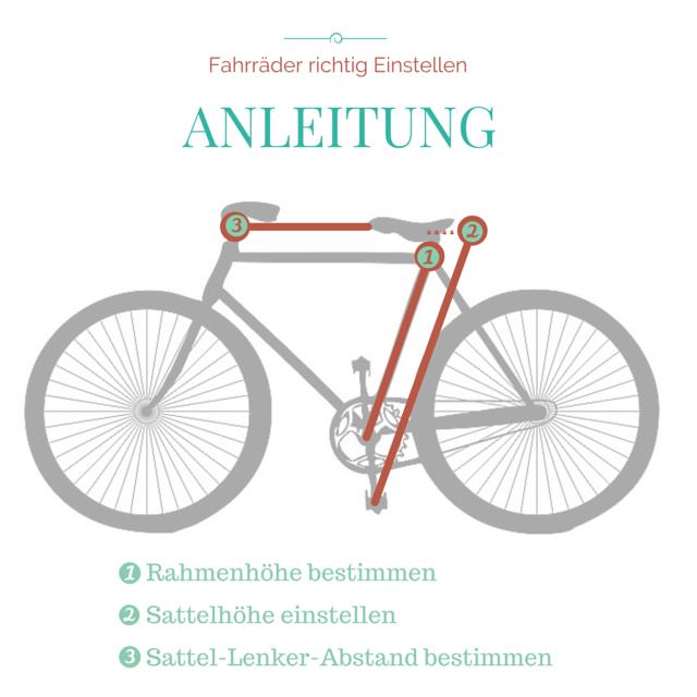 Mein Fahrrad Richtig Einstellen Vom Sattel Bis Zum Lenker