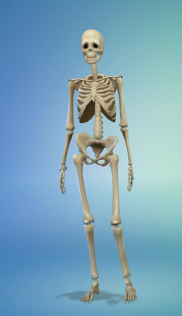 Mod The Sims Unlocked Jungle Adventure Skeleton Outfit Jungle Adventure Sims Skeleton Clothes