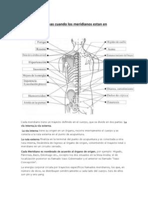 Síntomas de desequilibrio intestinal
