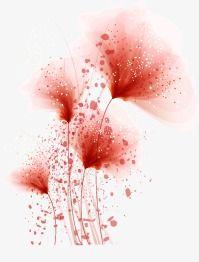 Beautiful,flowers,romantic,red