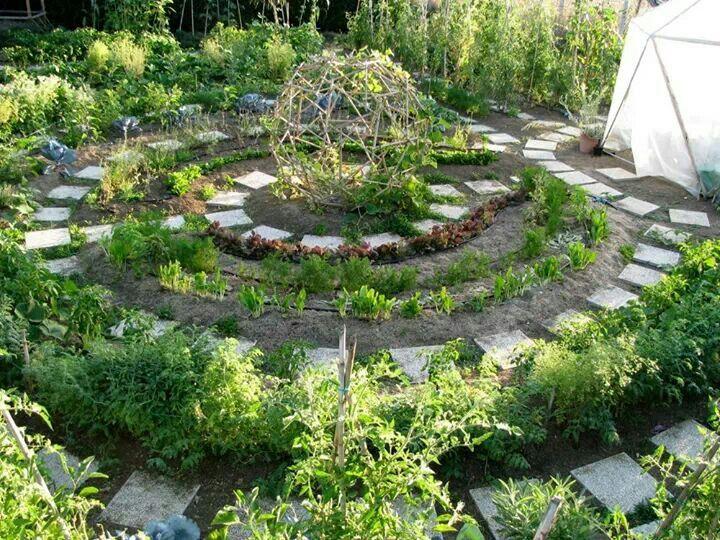 Mandala garden jardin mandala pinterest potager for Jardin mandala