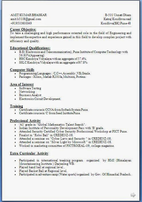 cv biodata sample template example ofexcellent curriculum vitae resume cv format with career objective