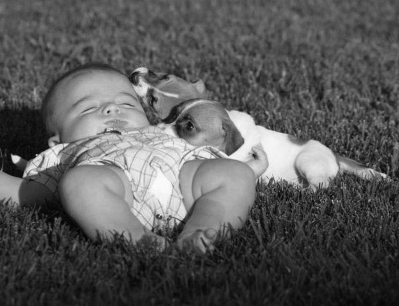 Fotografie Bambini ~ Buonanotte bimbi anne geddes cerca con google bambini