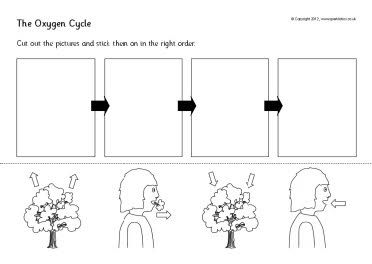 Printables Carbon Cycle Worksheets cycle worksheet davezan oxygen davezan