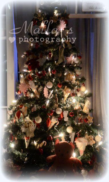 Joulupuu 2012 <3