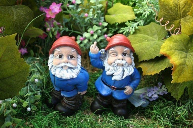 Gnome Garden: Mooning Gnome Funny Rude Custom Garden Gnome