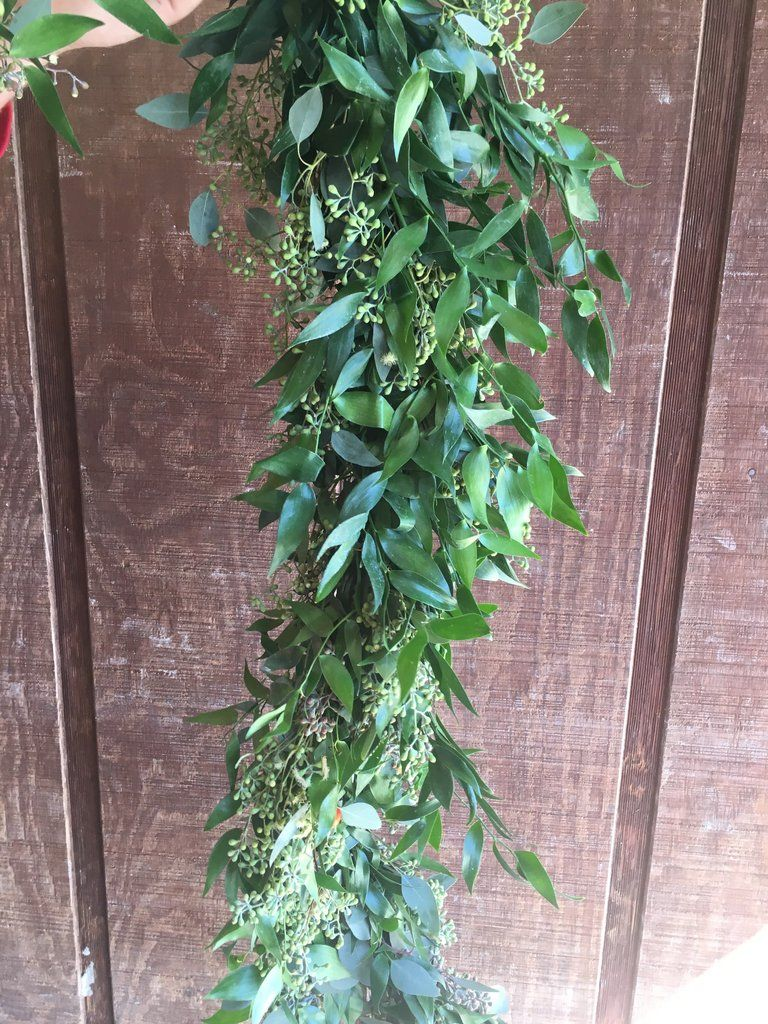 Italian Ruscus And Seeded Eucalyptus Garland The Guy