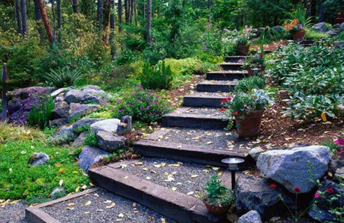 Wooded, gravel steps