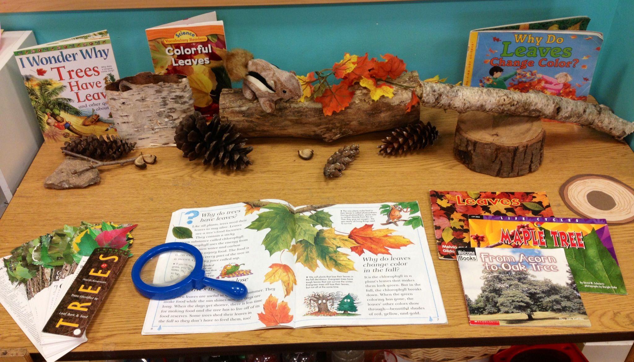 Preschool Leaf Tree Science Center Creations
