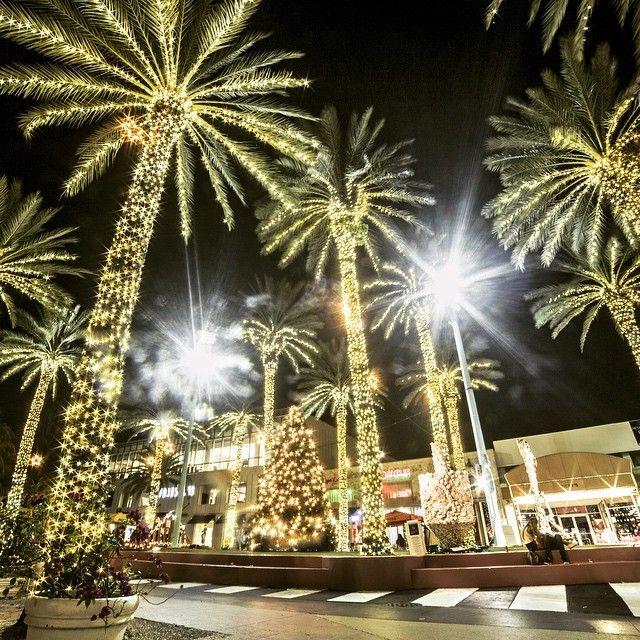 miami christmas lights miami_christmas_lights instagram photos and videos