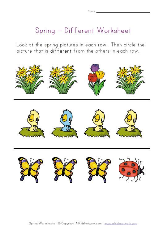 Spring Worksheet Recognize Different Things Worksheets