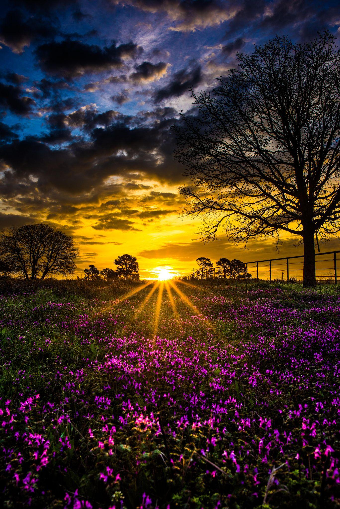 Morning Sun by Zach Ashcraft on 500px | Beautiful landscapes