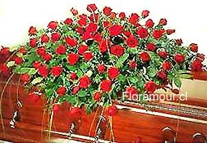 Frases De Condolenciasarreglos Funebres Para Condolencias