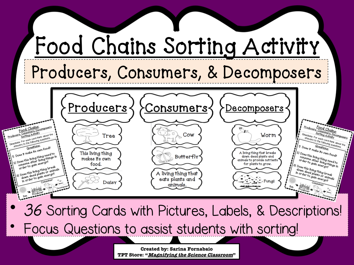 food chains sorting activity game about producers consumers decomposer ccss unit content. Black Bedroom Furniture Sets. Home Design Ideas