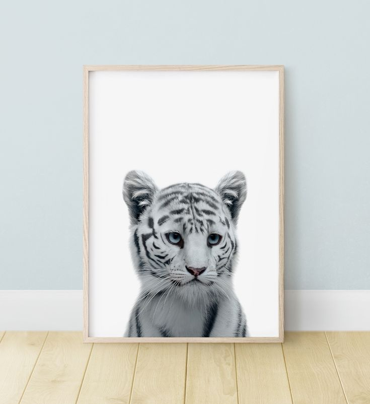 Pin On Rooms For Animal Lovers 3
