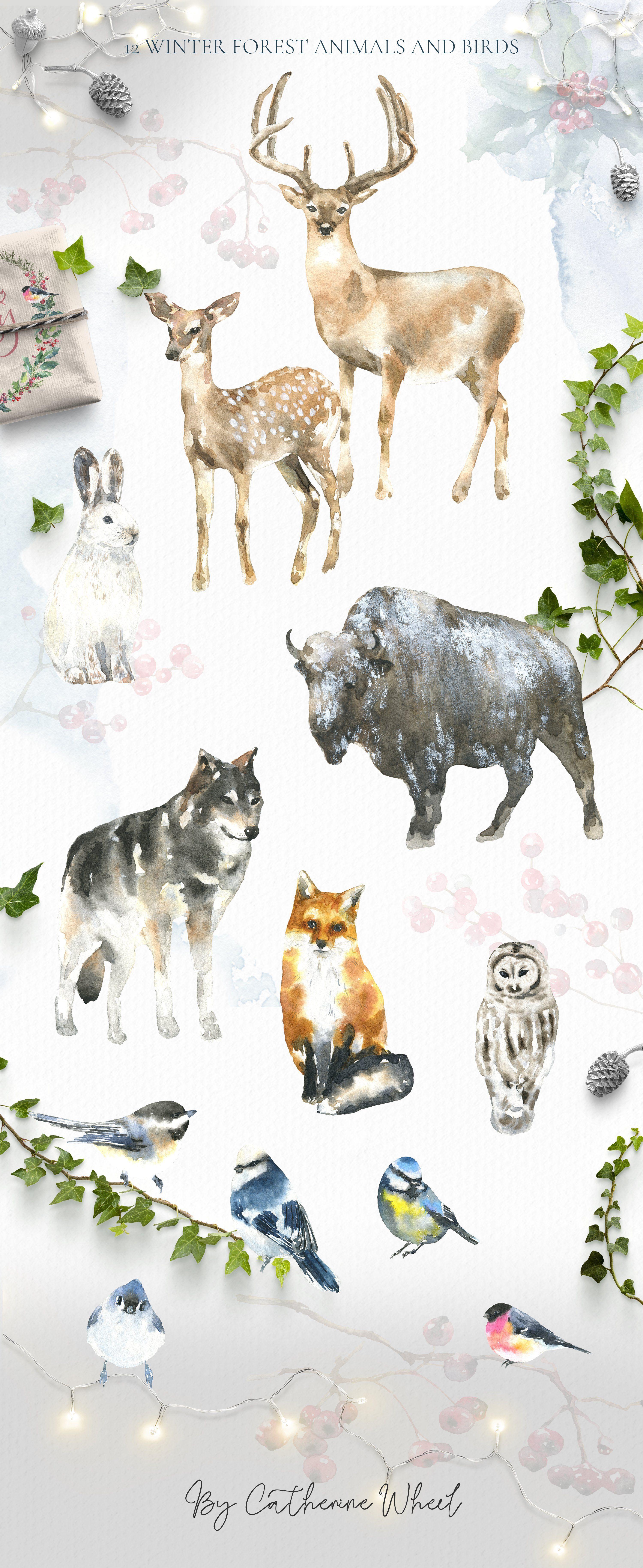 Merry Christmas Watercolor Deer by Catherine Wheel on
