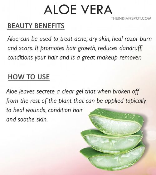 ALOE VERA Beauty benefits: Aloe vera tops the rank in healing and beautifying plants thanks to its anti-bacterial, anti-fungal and skin/scalp soothing properties. Aloe vera also is said to have anti-inflammatory properties. Aloe vera gel contains wealth of nutrients including vitamin C, A, E, Folic acid, zinc and potassium. More on aloe vera beauty benefits >> How to use: Mix aloe vera gel with turmeric and use it as a face mask to clear acne and other skin issues. Apply gel direct...