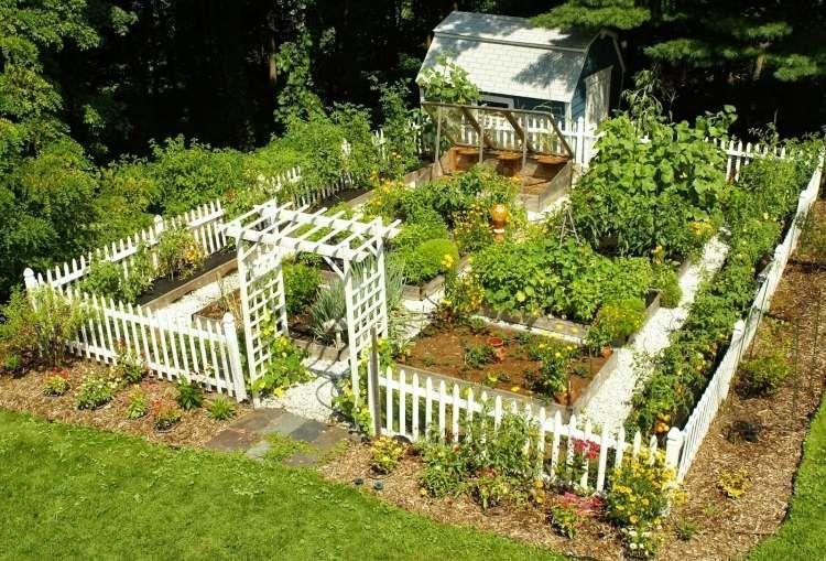 den garten richtig organisieren - gestalten, planen und pflegen, Garten und Bauten