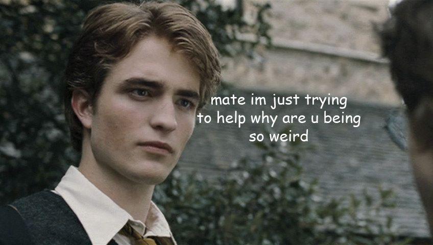 23 Times Harry Potter Was A Complete Fucken Idiot Haarfarben Robert Pattinson Hermine Granger