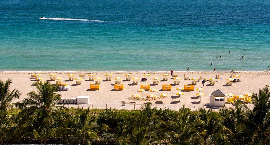 La Vista De South Beach Desde Nuestro Courtyard Cadillac Miami Oceanfront