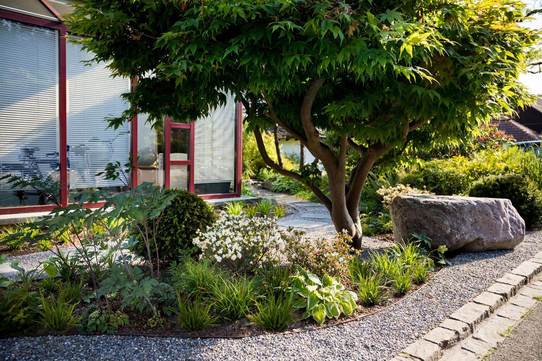 asiatisch angehauchter vorgarten mit hosta, carex und acer, Garten ideen