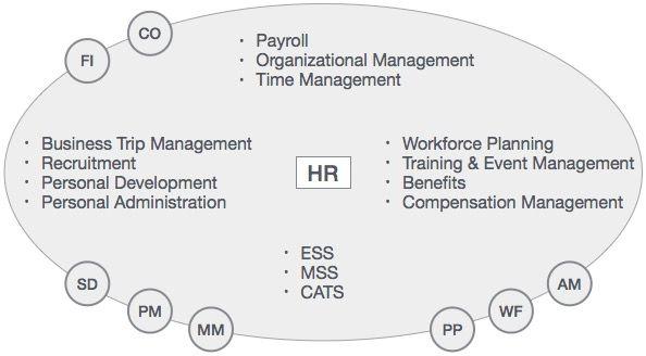 Sap Modules Organizational Management Recruitment Training Event Management