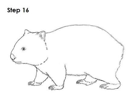 Image Result For Wombat Stew Masks To Print