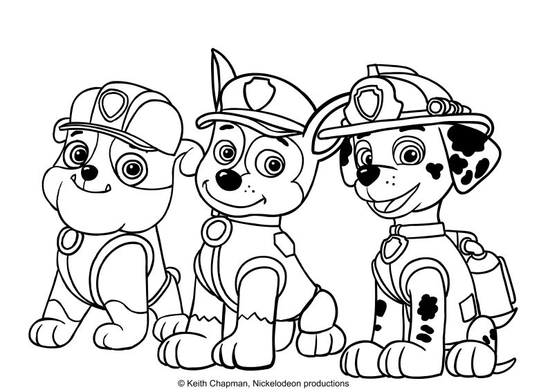 risultati immagini per paw patrol da colorare cartoni