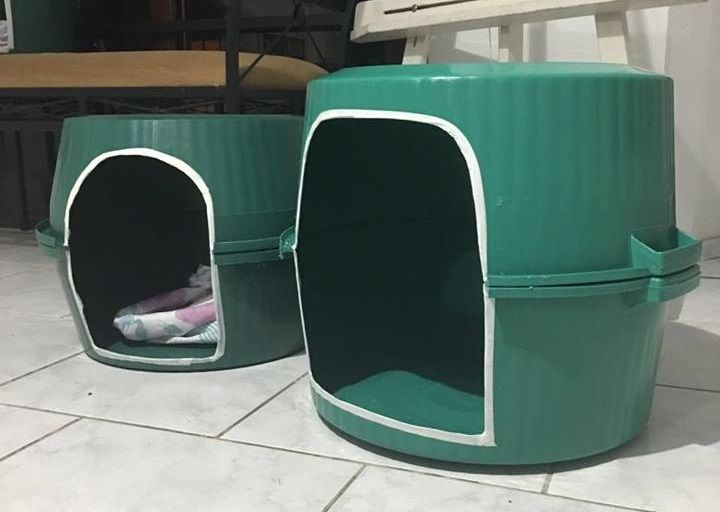 Top casa cachorro uspa | Pet | Pinterest | Casas para animais, Rua e  HX61