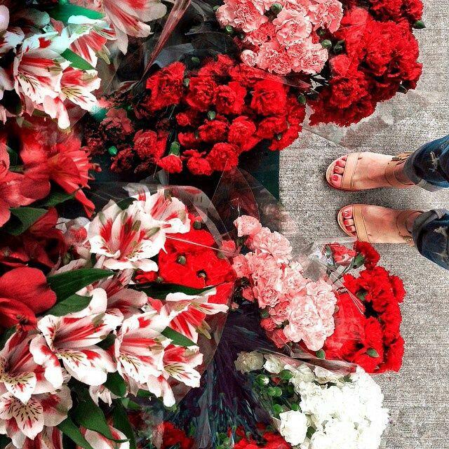 Flower Roses Pinterest: Pinterest: @TheBestSongEver