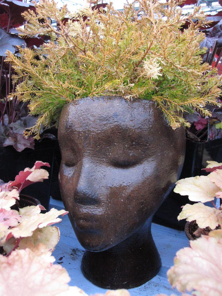 More P*T Heads Head Planters Face Planters Garden Art 400 x 300