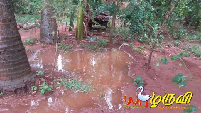 யாழில் மழை (புகைப்படம்)#Jaffna #Rain #srilanka #Yaalaruvi #யாழருவிhttp://www.yaalaruvi.com/archives/26957