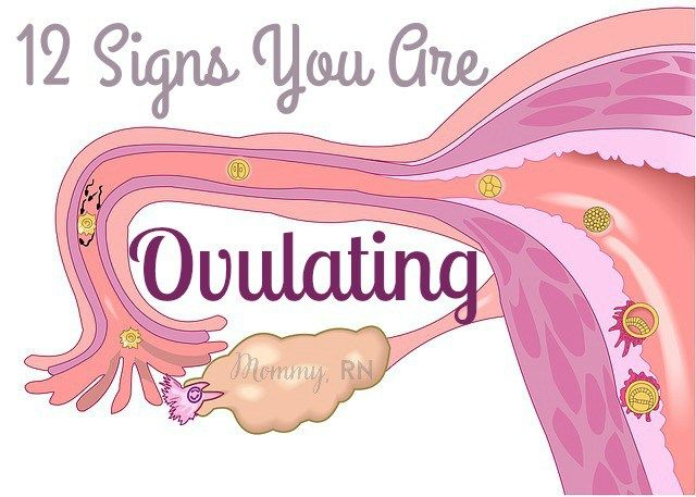 12 Signs That You Are Ovulating | pregnancy | Pregnancy calculator