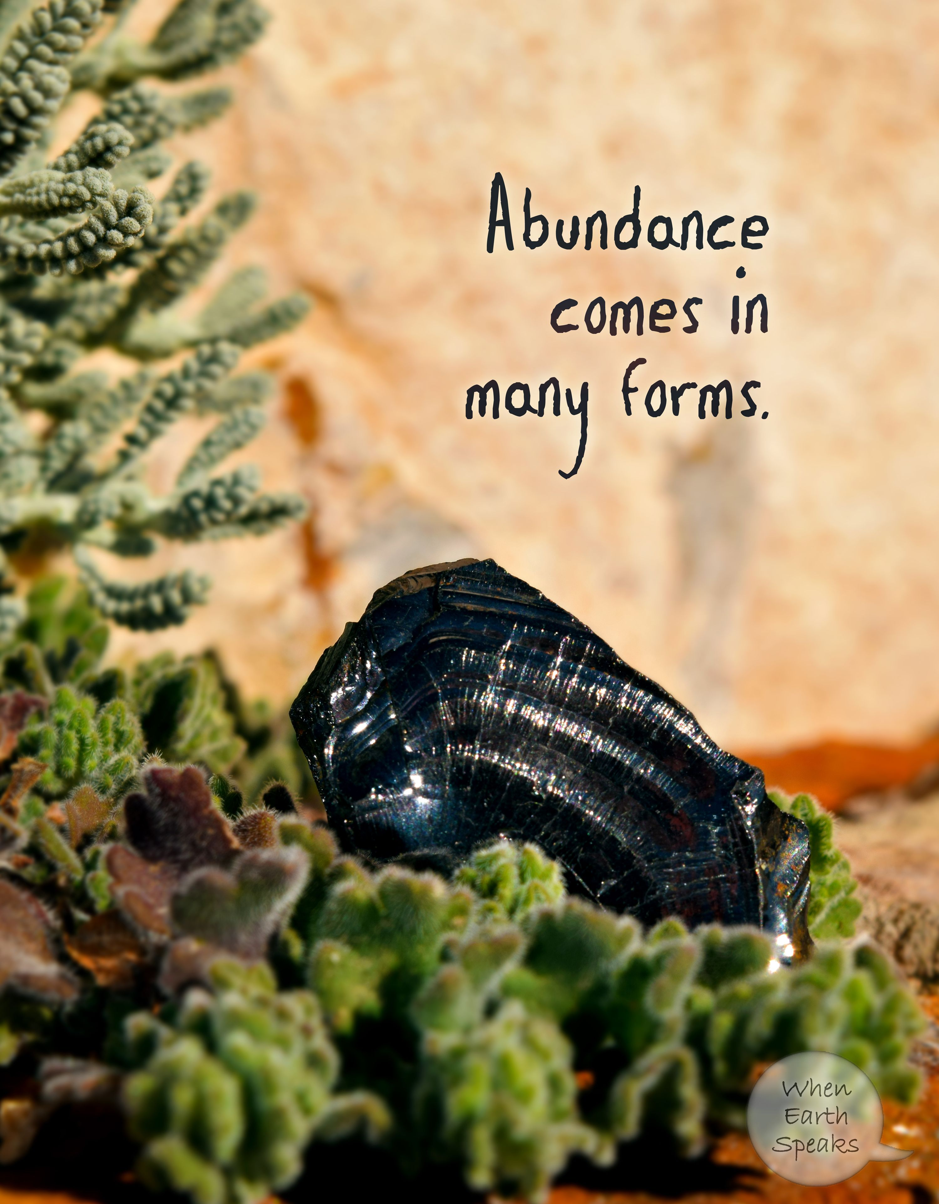 Inspirational abundance picture quote by When Earth Speaks.