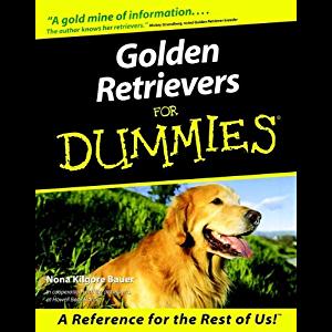 Golden Retrievers For Dummies Golden Retriever Retriever Golden Retriever Puppy