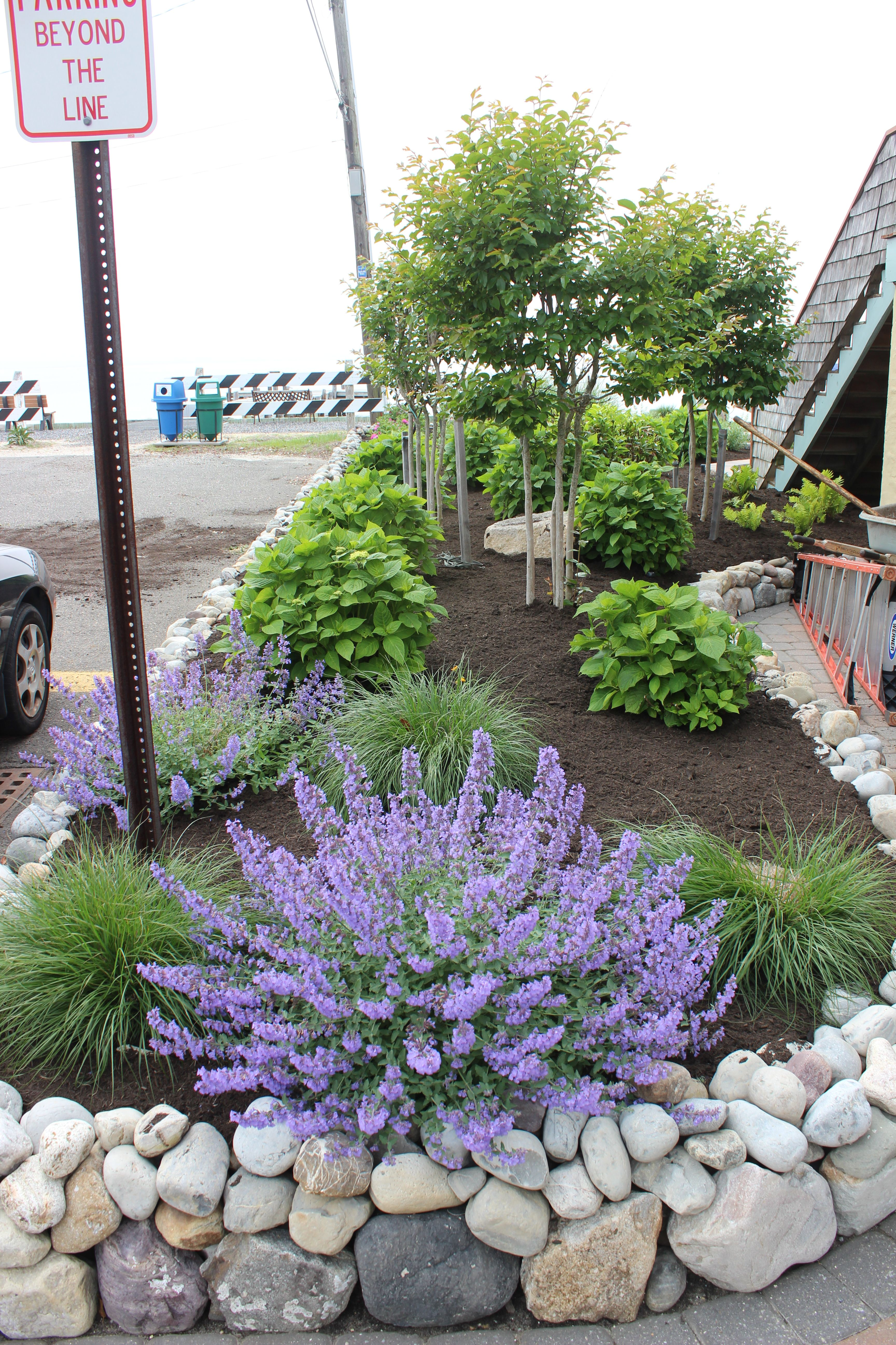 South Jersey Paver S Landscaping Pools Outdoor Living Rock Garden Landscaping Backyard Landscaping Garden Landscaping